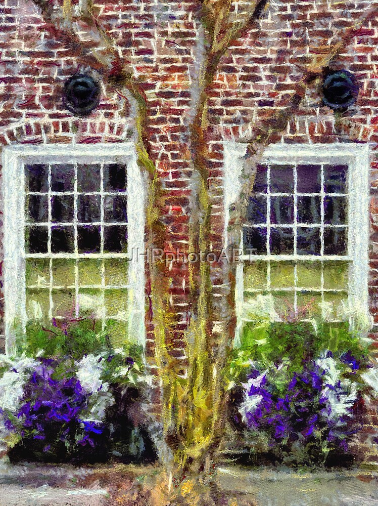 Charleston's Window Boxes by JHRphotoART