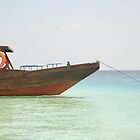 Boat on the beach by anjumura