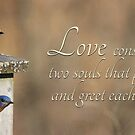 Love by Lori Deiter