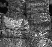Ship Rock in Black and White 3 by Thomas Young