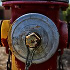 Fire Hydrant by Kyle Wilson