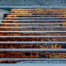 life is grate! by shutterbug261