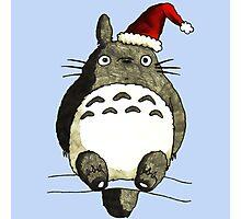 Totoro Christmas Photographic Print