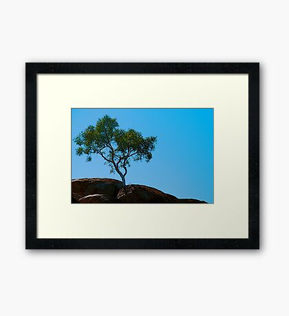 Rooted in Rock Framed Print