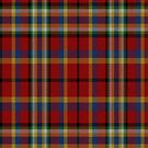 02325 Maricopa County, Arizona District Tartan Fabric Print Iphone Case by Detnecs2013