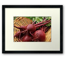 Fresh Beets Framed Print