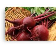 Fresh Beets Canvas Print