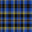 02330 Dallas County, Texas District Tartan Fabric Print Iphone Case by Detnecs2013