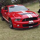RED GT by Joe Hupp