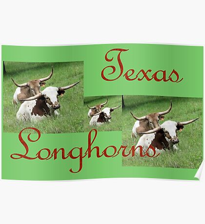 Texas Longhorns Collage Poster
