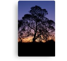 Ayer's Rock Sunset Canvas Print