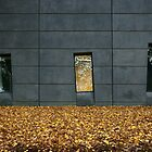 Autumn in Melbourne by athex
