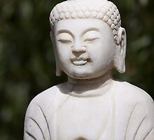 Buddha statue by TilenHrovatic