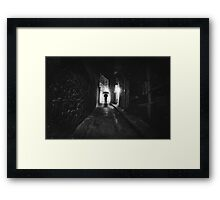 Decoy Framed Print