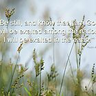 """Be still..."" by Donna Keevers Driver"