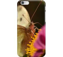 Cabbage Moth (Pieris rapae) iPhone Case/Skin