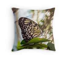 Butterfly Macro 11 Throw Pillow