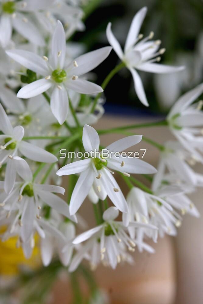 Wild Garlic's Beauties by SmoothBreeze7