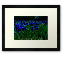 Flowers Blow in the Wind Framed Print