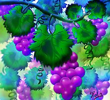 The grapevine by JiaSen