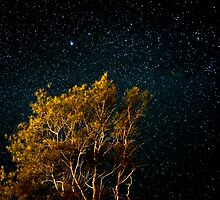 Under the stars by Kutay Photography