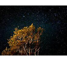 Under the stars Photographic Print