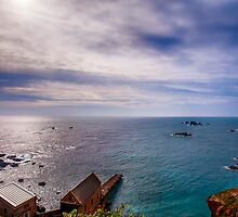 Lizard Point Cornwall by Chris Thaxter