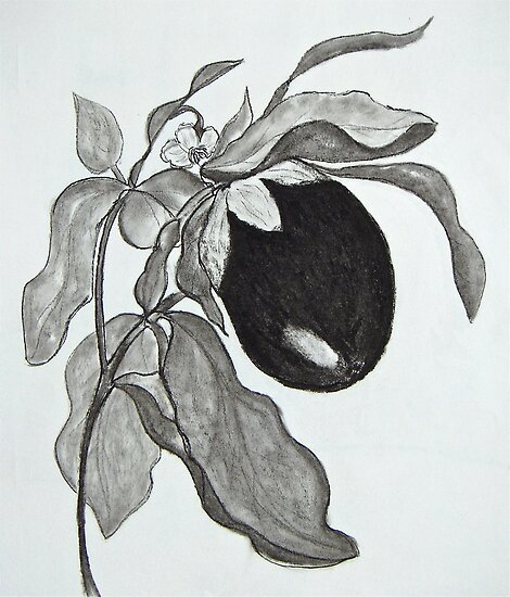 Eggplant in Charcoal by Christine Chase Cooper