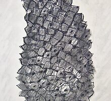 Pine Cone in Charcoal by Christine Chase Cooper