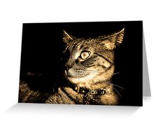Antique Tasha Greeting Card