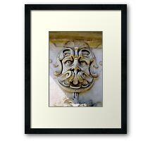 stoney face Framed Print