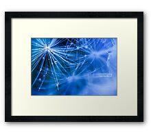 Dandelion fluff... 2 Framed Print