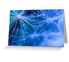 Dandelion fluff... 2 Greeting Card