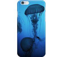 Portrait of a Jellyfish- Blue iPhone Case/Skin