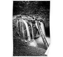 Log Jam Black and White Poster