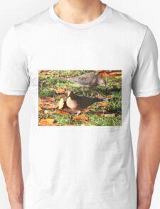 Two Mourning Doves Unisex T-Shirt
