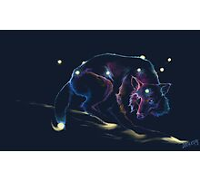 Astral Wolf Photographic Print