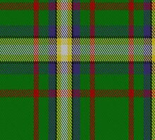 02379 Decatur Presbyterian Church Tartan Fabric Print Iphone Case by Detnecs2013