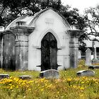 Crypt In Spring by SuddenJim