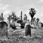 Cemetery by SuddenJim