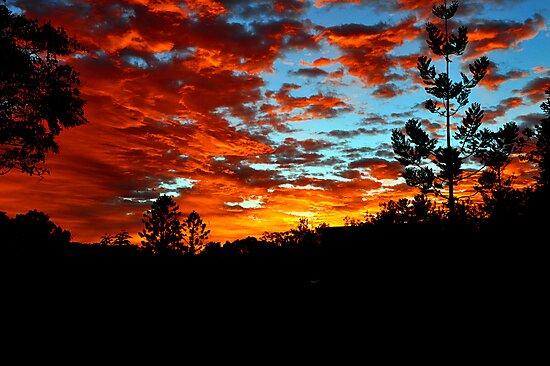 Allambie Sunrise. Cedar Creek, Queensland, Australia. by Ralph de Zilva