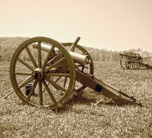 Cannons on the Battlefield by Susan S. Kline