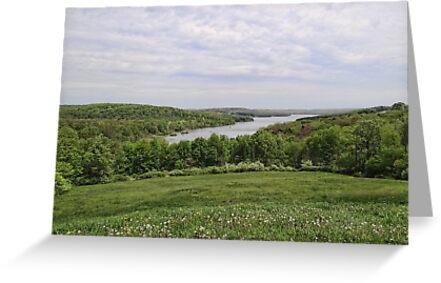 A View of Prince Galitzen Lake by vigor