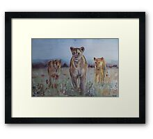 The Lions of Africa 1 Framed Print