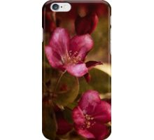 potential - velvety crababble blossoms iPhone Case/Skin