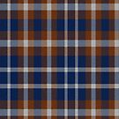 02382 Wake County, North Carolina District Tartan Fabric Print Iphone Case by Detnecs2013