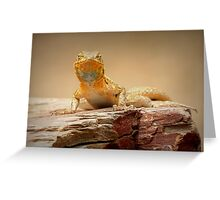 Common Side-blotched Lizard~ Eye Contact Greeting Card