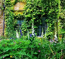 Hidcote windows by Rob Meredith