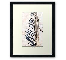 Salt Lake fenceline II Framed Print