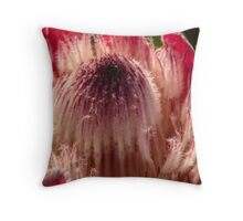 Protea Bloom Throw Pillow